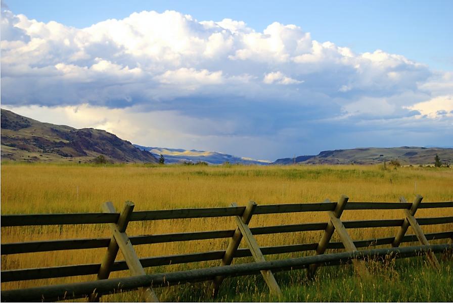 Montana.gov