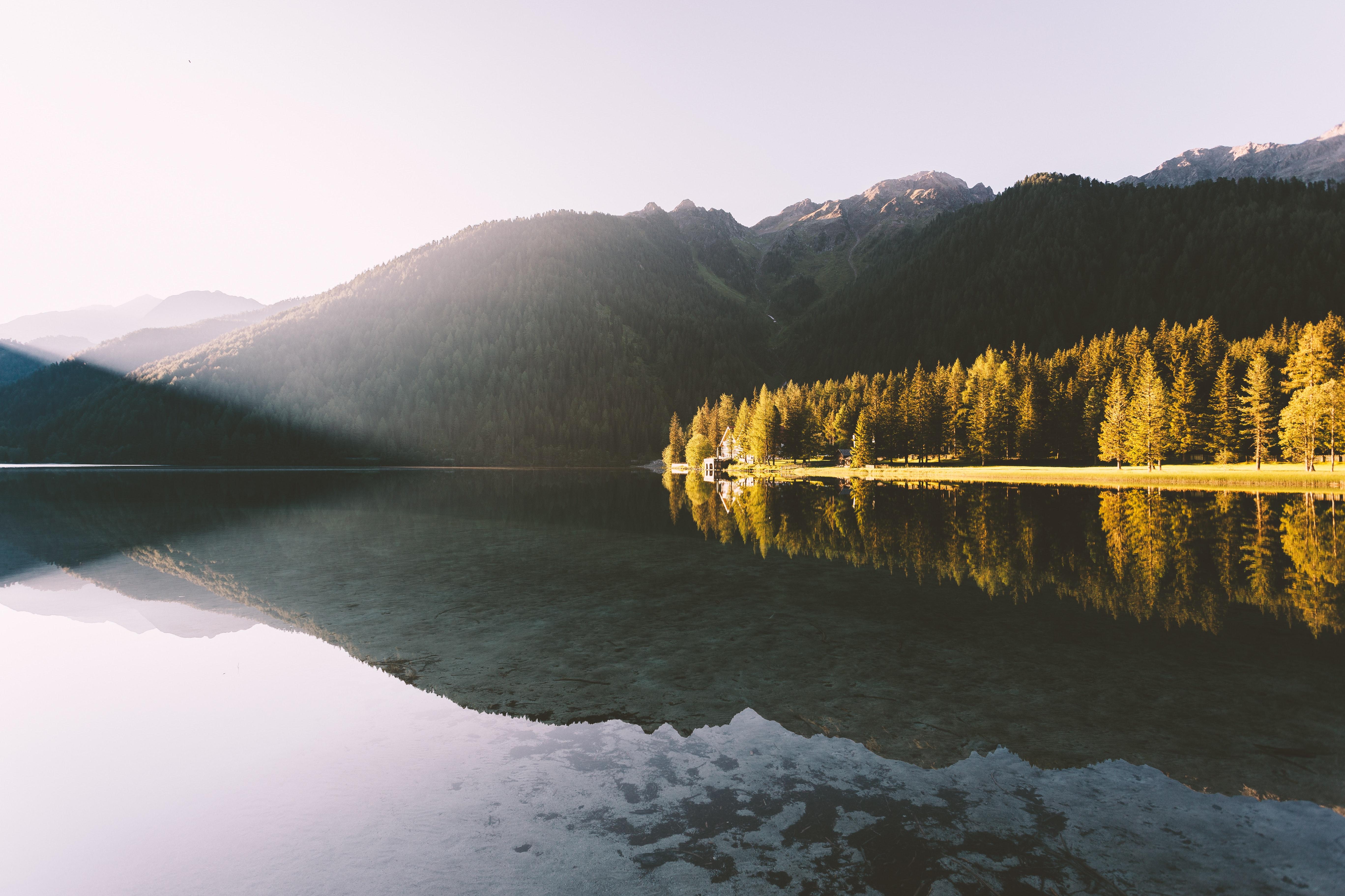 Montana Living